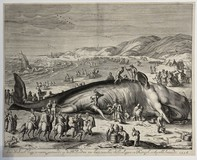 "Antique engraving ""The Whale Beached"""