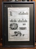 "Antique engraving ""The Art of Military Fortification"""