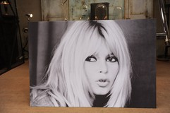Brigitte Bardot printed photo