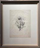 "Antique engraving ""Composition with tulip and daffodil"""